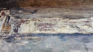 Ist das Kunst oder nur ein verrottender Holzladen?
