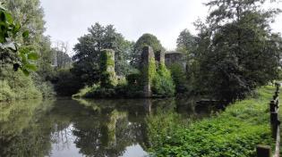 Ruine der Wasserburg Elbach