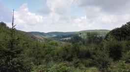 Blick über die Höhen des Schwarzenberger Landes