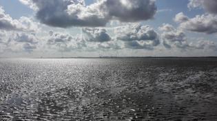 Im Hintergrund der Containerhafen von Wilhelmshaven