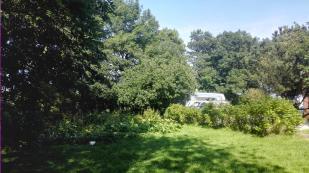 Wir stehen mit dem Womo am Garten hinter dem Haus