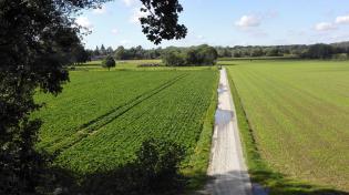 Blick vom Bahndamm Richtung Hülchrath (links)