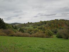Auf der von Tälern umsäumten Hochfläche zwischen Nettersheim und Kall