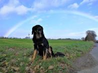 Hinter Faid erscheint plötzlich ein Regenbogen