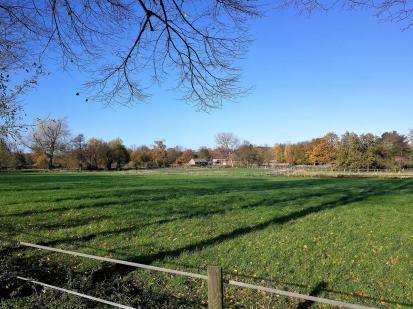 Pferdekoppeln zwischen Herten und Recklinghausen-Hochlamark