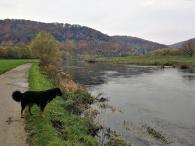 Doxi am Fluss