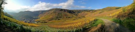 Panoramaaufnahme von den Weinbergen zwischen Mayschoß und Rech