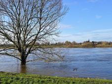Wir erreichen die Maas, die gerade Hochwasser führt