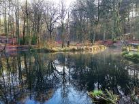Im Reichswald Kleve