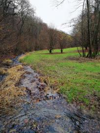 Im Talgrund des Saalbachtals