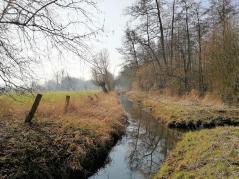 Der alte Mühlenbach