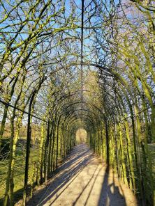 Laubengang im Schlosspark