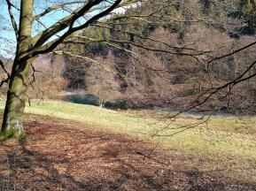 Teich am Huschelbach