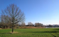 Landschaft an der Willichscher Ley