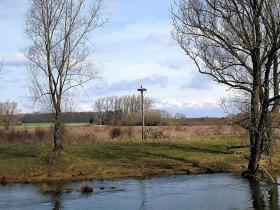Das Storchennest vom anderen Ufer aus gesehen