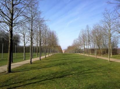 Allee und Sichtachse von Schloss Steinfurt in den Bagno