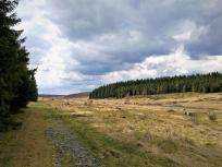 Blick in das Schwalmbachtal am Übergang zum Truppenübungsplatz