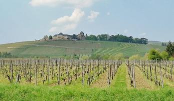 Schloss Johannisberg oberhalb von Geisenheim