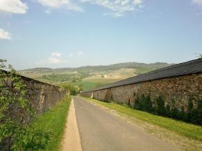 Im Mitellalter wurden die Weinberge in kirchlichem Besitz durch hohe Mauern geschützt