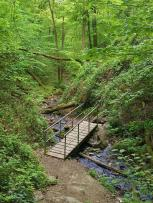 Am Anfang ermöglichen noch Brücken den bequemen Wechsel zwischen den Bachseiten