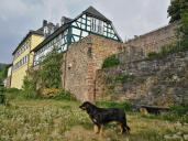 Doxi unterhalb des Schlosses
