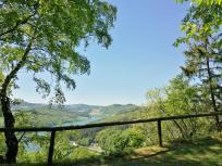 Blick von unserem Rastplatz am Eisenberg zum See