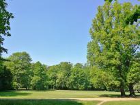 Englischer Landschaftsgarten hinter dem Herzoglichen Museum