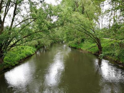 Blick von der Diemelbrücke auf den Fluss