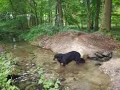 Endlich ein Kanal - und so sauberes, klares Wasser