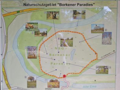 Infotafel am Naturschutzgebiet Borkener Paradies