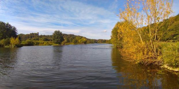 Die ersten Bäume an der Ruhr nehmen bereits herbstliche Farben an