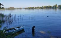 Doxi testet die Wasserqualität des Staffelsees
