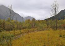 Blick zwischen den Bergen in Richtung des Ortes Graswang