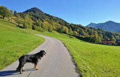 Wir beginnen unseren Aufstieg Richtung Hirschgrohrkopf