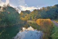 Uferzone am Nordrand des Sees