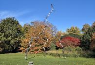Blitz-Skulptur im Stadtpark von Grevenbroich
