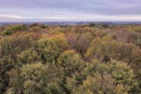 Blick von der Spitze des Aussichtsturms Richtung Kamp-Lintfort im Norden
