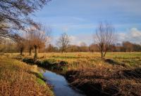 Als die Sonne herauskommt, wirkt die Winterlandschaft plötzlich ganz herbstlich