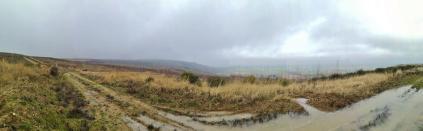 Panoramabild vom Rande der Höhe