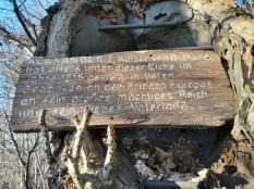 Erinnerungstafel an einer riesigen Eiche
