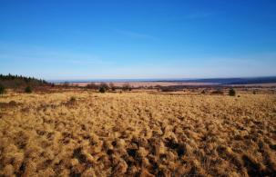 Blick vom Aussichtspunkt nach Nordosten