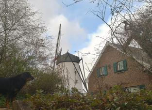 Die alte Braunsmühle am Ortsrand von Büttgen