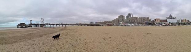 Panoramabild vom Strand in Scheveningen