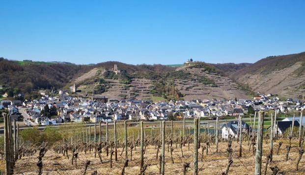 Oberhalb von Dieblich geht der Blick hinüber zu den Burgen oberhalb von Kobern-Gondorf