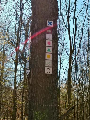 Auf dem Hauptkamm des Kyffhäuser-Waldes verlaufen zahlreiche (Fern-) Wanderwege