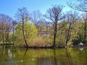 Teich im Abtmaundorfer Park