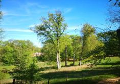 Landschaft im Glieniker Park am Wirtshaus Moorlake