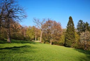 Blick in den Park hinter dem Schloss Belvedere