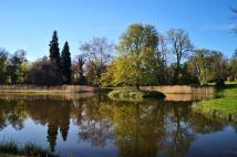 Wasserflächen im Schlosspark