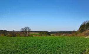 Blick in die leicht gewellte Landschaft des Hohen Fläming